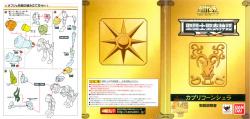 [Luglio 2013] Saint Cloth Myth EX Capricorn Shura - Pagina 9 Abcn0b0y