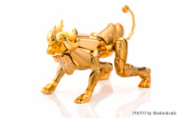 Leo Aiolia Gold Cloth ~Original Color Edition~ AdhASY3D