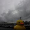Rubber Duck AdvRrVb2