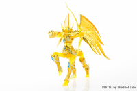 Sagittarius Seiya New Gold Cloth from Saint Seiya Omega QTTRNG0d