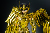 Sagittarius Seiya Gold Cloth Acu2Zu00