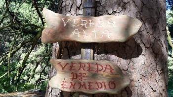 21/06/2015 cercedilla-navalmedio-camorritos-fuenfria-vereda alta senda del agua. Jan2XJdN