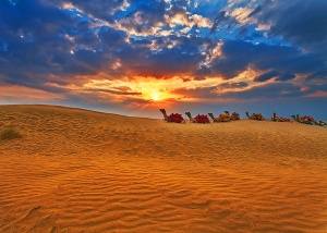 Thar desert wallpapers