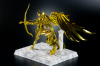 Sagittarius Seiya Gold Cloth AbcYwBQy