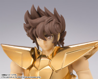 [Myth Cloth EX] Pegasus New Bronze Cloth - Masami Kurumada Career 40th Anniversary Edition (Novembre 2014) HRlF7HNh