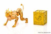 Leo Aiolia Gold Cloth ~Original Color Edition~ AcleO6Yt