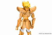 Leo Aiolia Gold Cloth ~Original Color Edition~ AclDNlhZ