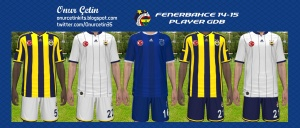 Download Fenerbahce 14-15 Player GDB by Onur Çetin