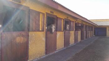 08/11/2015: Manzanares el Real - Embalse Navacerrada - Navalmedio - Senda Ortiz - La Barranca - GR10 - Mataelpino  0BMTp8id