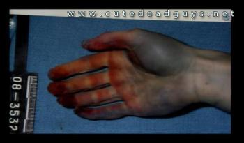 Travis Alexander Crime Scene Autopsy