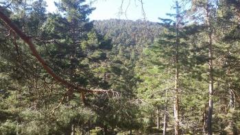 10/03/2017. Valle de la Barranca JkmeqG1s
