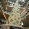 Kowloon Junior School 7H47K1bi