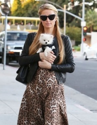 Paris Hilton - Goes Shopping In Beverly Hills 03-11-2014