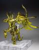 Sagittarius Seiya Gold Cloth Acu9LByK