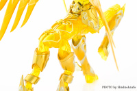 Sagittarius Seiya New Gold Cloth from Saint Seiya Omega FgFMcSa4