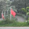 錦上荃灣 2013 February 23 - 頁 4 FWbabSAU