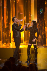 Karen Fairchild - 2015 American Music Awards @ Microsoft Theater in Los Angeles - 11/22/15