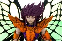Papillon Myû Surplice - Page 2 AcelaP4e