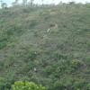 水長流 2012-09-22 AcwUZ068