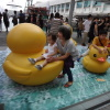 Rubber Duck Abt3f27O