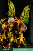 Papillon Myû Surplice - Page 2 AdvasMNj