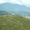 Hiking Tin Shui Wai - 頁 5 MvcNVqF9
