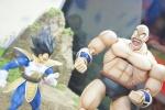 [S.H.Figuarts] Dragon Ball Z - Pagina 2 Adwd0mdC