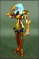 [Febbraio 2013]Saint Cloth Myth EX  Pisces Aphrodite - Pagina 20 AcgkAyPi