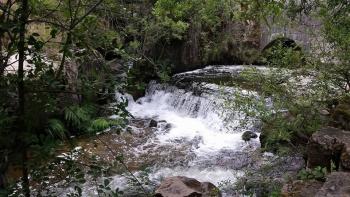14/06/2015 - Cercedilla a Segovia por el Río Eresma - 7:15 Pedaleando. KXx8QZax