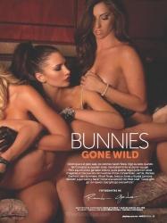 Bunnies Gone Wild 3