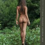 Gatas QB - Wald Lust Official Calendar 2015