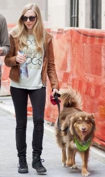 Amanda Seyfried walked wih her dog, Finn