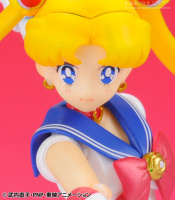 Goodies Sailor Moon AcrWfdXs