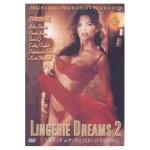 383) Lingerie Dreams 2 (1994)