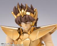 [Myth Cloth EX] Pegasus New Bronze Cloth - Masami Kurumada Career 40th Anniversary Edition (Novembre 2014) ZIpG6UYP