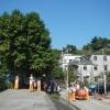 八鄉元崗村 眾聖宮重修開光典禮 C74657H0