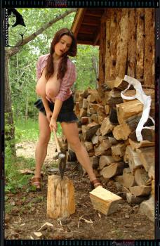018b - Holz vor der Huette