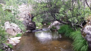 14/06/2015 - Cercedilla a Segovia por el Río Eresma - 7:15 Pedaleando. IkgNm0fo