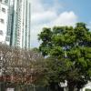 錦上荃灣 2013 February 23 AdngduCo