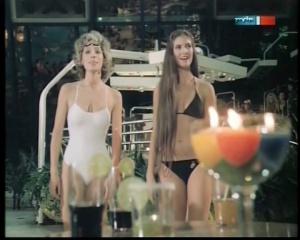 Maxi Biewer Bikini