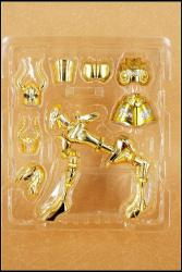 [Luglio 2013] Saint Cloth Myth EX Capricorn Shura - Pagina 10 AcjyFrLL