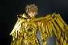 Sagittarius Seiya Gold Cloth AcddLaV2