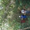 跳蛙 2012-01-07 Ace8PRRT