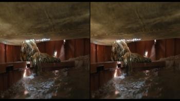 ¯ycie Pi 3D / Life Of Pi 3D (2012) 1080p.BluRay.Half-SBS.DTS.x264-Public3D