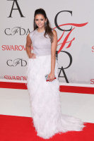 CFDA Fashion Awards - Cocktails (June 1) HYaHSJmP