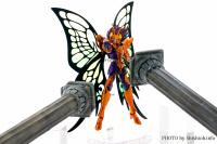 Papillon Myû Surplice - Page 2 Acs7AJH9