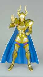 [Luglio 2013] Saint Cloth Myth EX Capricorn Shura - Pagina 11 AccPCzIh
