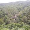 Hiking 2012 June 16 - 頁 4 CFOStcL0