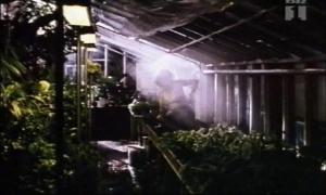 Charlotte Sieling @ Elsker Elsker Ikke... (DK 1995) [VHS]  O4x9YpFh