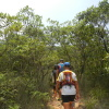 Hiking 2012 June 16 - 頁 4 50QzBSyR